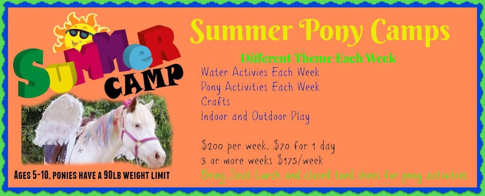 Pony Camp Science Week – June 18-20